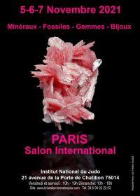 Paris salon international