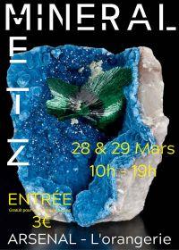 Salon aux minéraux, fossiles et gemmes