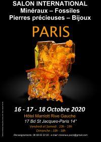 Salon International minéraux fossiles pierres précieuses bijoux Paris