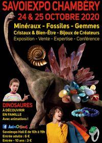 Minéralexpo Chambéry Minéraux Fossiles Gemmes