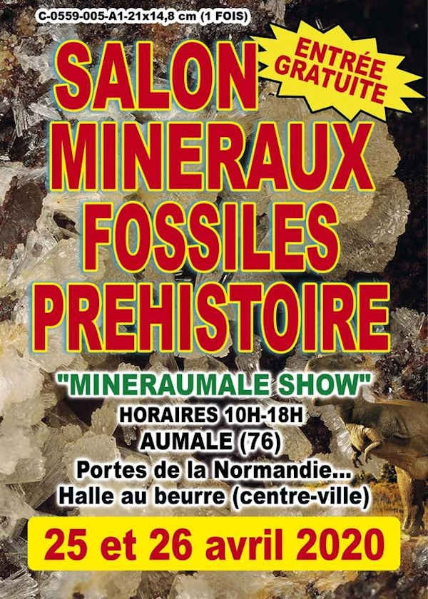 5ème bourse Exposition de Minéraux et Fossiles Préhistoire