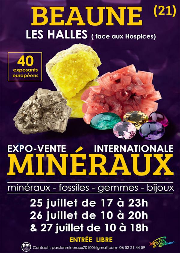 Salon aux minéraux et fossiles