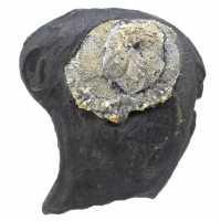 Pyrite fleur sur gange