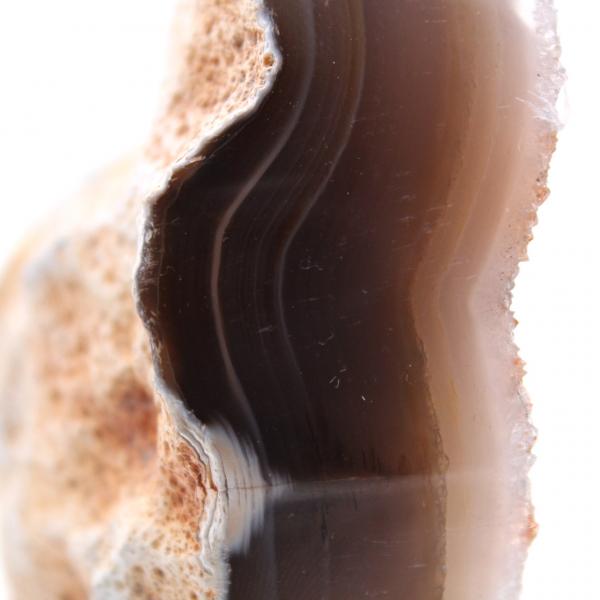 Cristaux de quartz sur agate polie