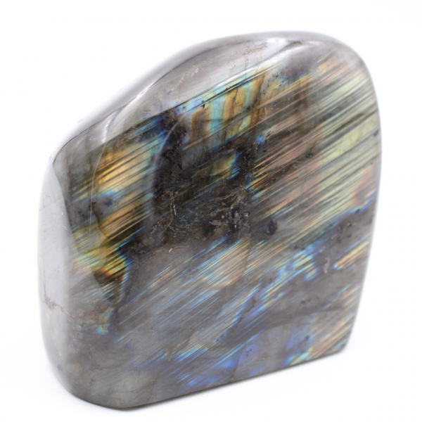 Labradorite polie pour collection